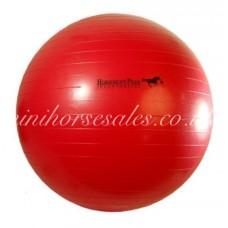Inflatable Play Ball