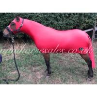 Red MHS full body Slinkie