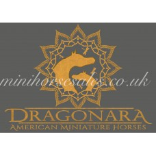 Logo Digitisation