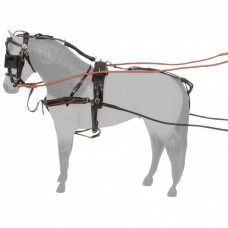 Patent Show Harness